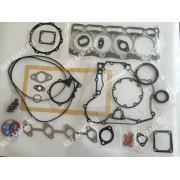 Комплект прокладок CT4.91TV, RI-25-15015-00