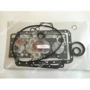 Комплект прокладок ДВС CT 4.134di, RI-25-38513-00