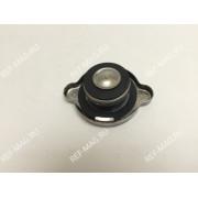 Крышка горловины радиатора, RI-30-00397-00