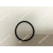 Уплотнительное кольцо, RI-33-0982